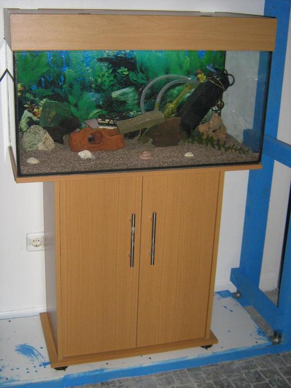 reduziert ein sch nes 112 liter aquarium komplett lieferung m glich in dortmund fische. Black Bedroom Furniture Sets. Home Design Ideas