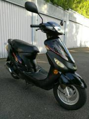 Rex Roller 50