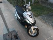 REX RS 460