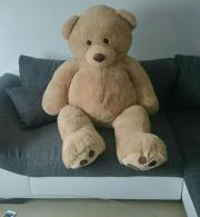 Riesen großer Teddybär