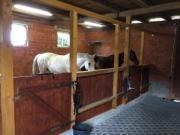 Schöne Pferdebox mit