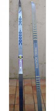 sportlicher LL Ski