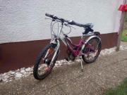 Tecno Bike