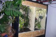 Terrarien Float-Glasscheiben