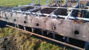 Tränkgitter für Kälber