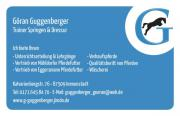 Trainer Springen & Dressur,