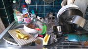 WG sucht Geschirrspülmaschine