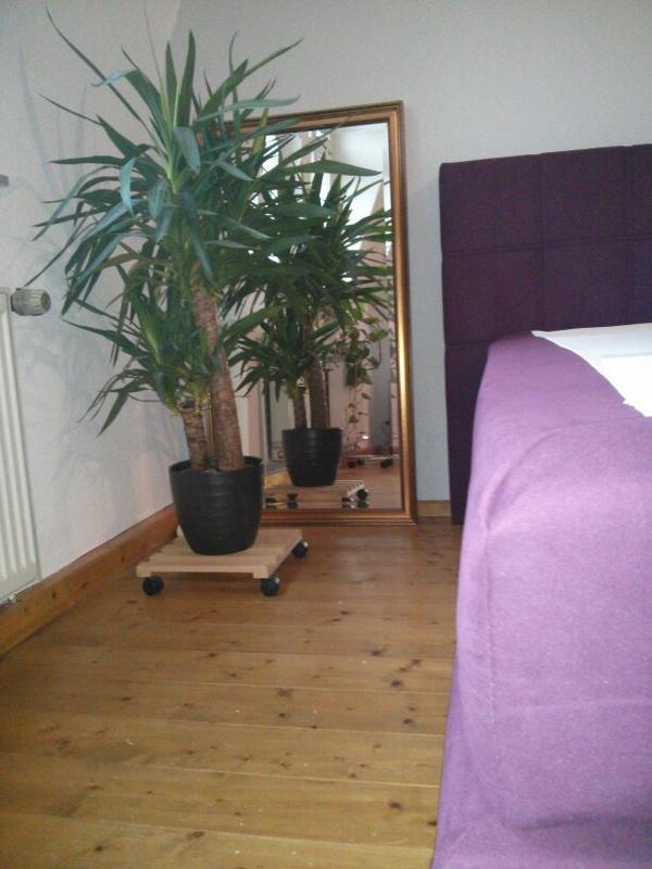wundersch nes boxspring bett in n rnberg betten kaufen und verkaufen ber private kleinanzeigen. Black Bedroom Furniture Sets. Home Design Ideas