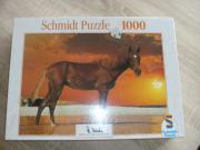 2 Puzzle mit 1000 Teilen