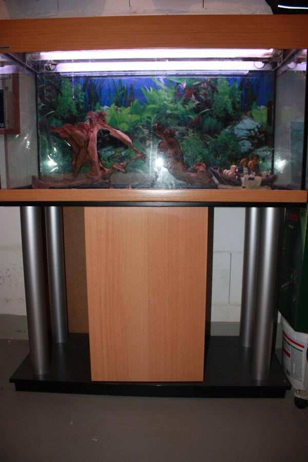 aquaristik in pforzheim kaufen bei deinetierwelt. Black Bedroom Furniture Sets. Home Design Ideas
