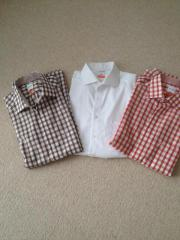 3 Herren-Hemden