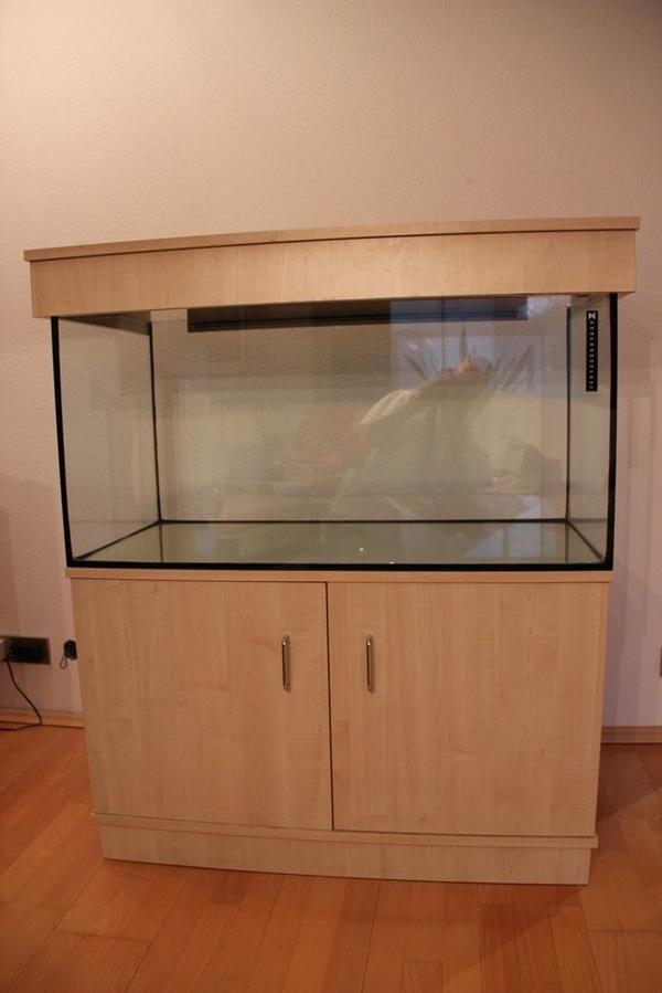 aquarium kies kaufen aquarium kies gebraucht. Black Bedroom Furniture Sets. Home Design Ideas