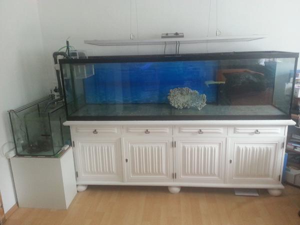 meerwasser aquarium verkaufen kleinanzeigen kaufen. Black Bedroom Furniture Sets. Home Design Ideas
