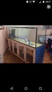Aquarium 520L