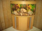 Aquarium Eckaquarium ca