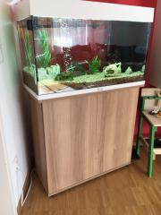 Aquarium Juwel 125