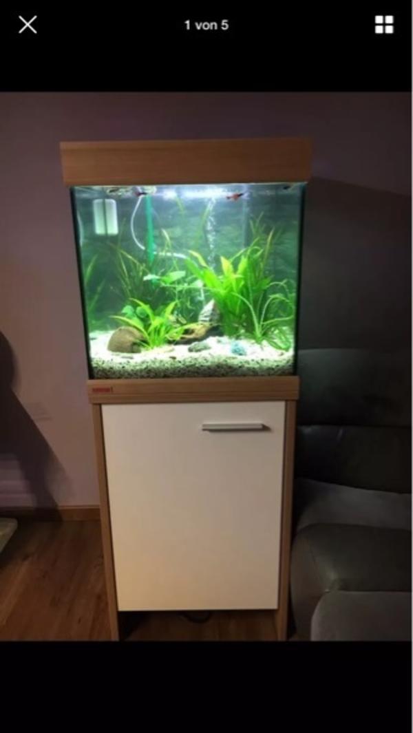 ersatzteile kleinanzeigen aquaristik kaufen verkaufen. Black Bedroom Furniture Sets. Home Design Ideas