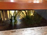 Aquariumzubehör