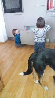 Babysitterin gesucht