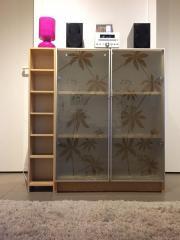 billy regal glastueren haushalt m bel gebraucht und. Black Bedroom Furniture Sets. Home Design Ideas