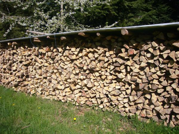 buche brennholz gebraucht kaufen nur 3 st bis 75 g nstiger. Black Bedroom Furniture Sets. Home Design Ideas