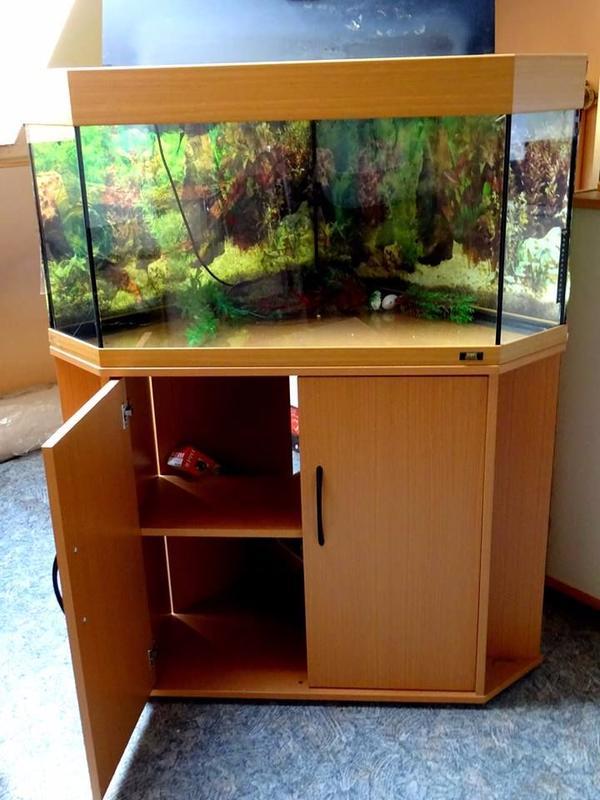 aquarium eck kleinanzeigen tiermarkt deinetierwelt. Black Bedroom Furniture Sets. Home Design Ideas