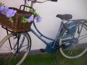 Fahrrad 28 Hollandrad