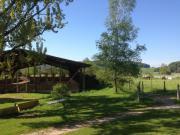 Freie Pferdeboxen in DE-Lottstetten direkt