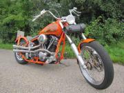 Harley-Davidson Wishbone