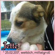 Jette, 5 Monate