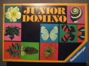 Junior Domino von
