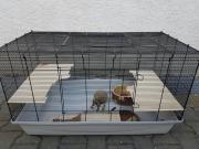Käfig Hamster Meerschweinchen