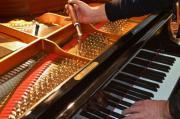 Klavier- und Flügelstimmung