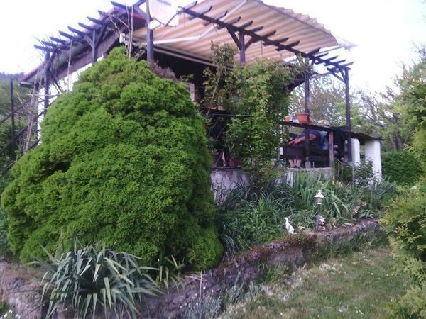 kleingarten in der kleingartenanlage 39 am einsiedlerberg. Black Bedroom Furniture Sets. Home Design Ideas