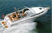 Motoryacht Monaco 290