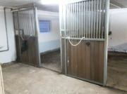 Pferde Boxen frei