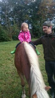 Pferdemist zu verschenken...
