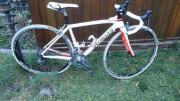 Rennrad Damen Specialized