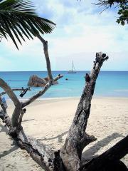 Seychellen - Segeln im Traumrevier im