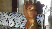 Skulpturen Die Nackte