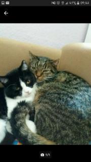 Susi und Vicky/
