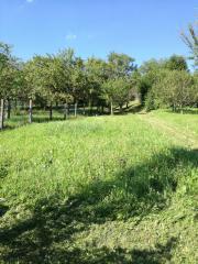 Verkauf von Gartengrundstück