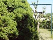 Verkaufe Kleingarten