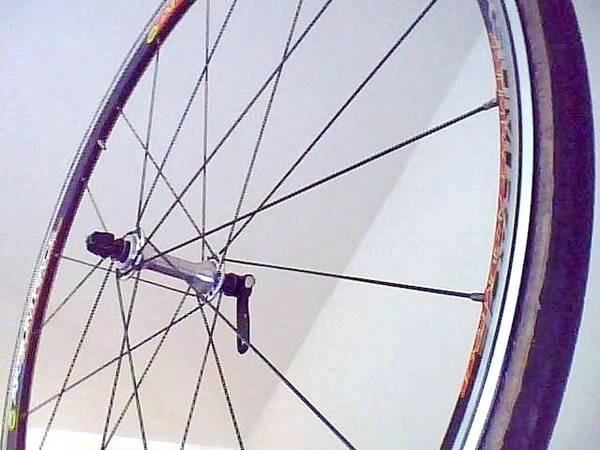 Vorderad Hinterad Treckingrad Rennrad Cityrad