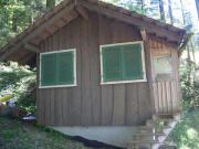 Wald/Ferienhaus