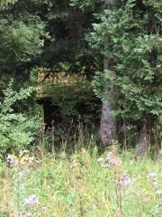 Waldrandgrundstück, ruhig und