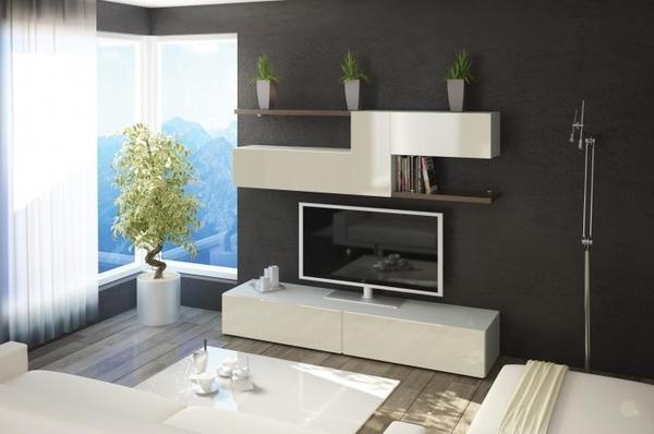 Wohnzimmerschrank modern-kaufen bei der Firma Daniel ...